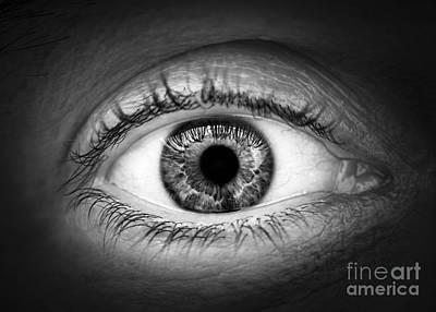 Seeing Photograph - Human Eye by Elena Elisseeva