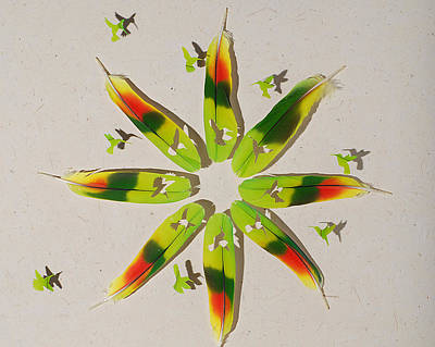 Shadowbox Mixed Media - Hummingbird Flower 1 by Chris Maynard