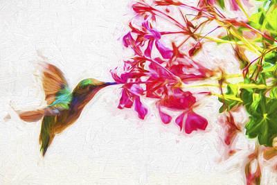 Hummingbird In Flight Digitally Painted Print by David Haskett