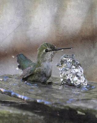 Hummingbird Spa Print by Angie Vogel