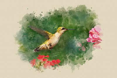 Iridescent Painting - Hummingbird - Watercolor Art by Christina Rollo