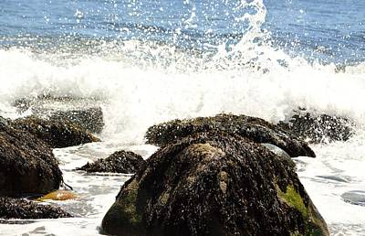 Hunters Beach Splash Acadia Original by Lena Hatch