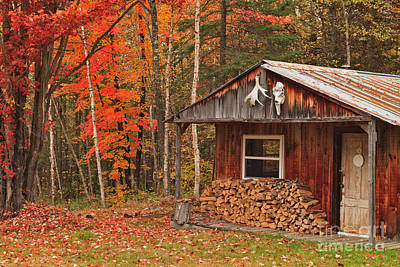 Maples Photograph - Hunting Cabin In The Middle Of Nowhere by Charles Kozierok