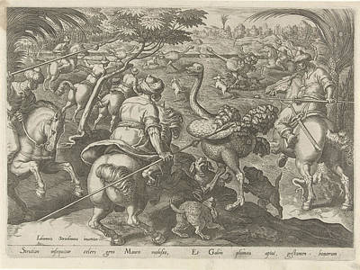 Ostrich Drawing - Hunting Ostriches, Philips Galle by Philips Galle