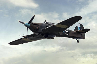 Whalen Photograph - Hurricane Pz865 Mk IIc by J Biggadike
