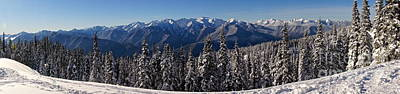 Washington Photograph - Hurricane Ridge Panorama by Sean Griffin