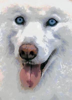 Dog Painting - Husky by Georgi Dimitrov