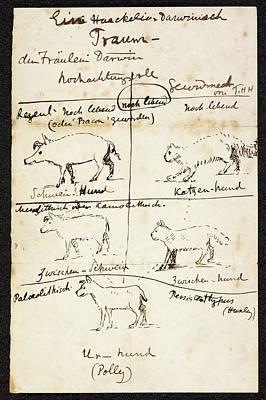 Huxley Photograph - Huxley On Charles Darwin's Dog by British Library