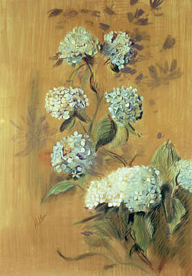 Impressionism Drawing - Hydrangeas by Paul Cesar Helleu