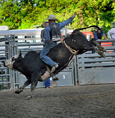 Bull Riders Photograph - I Got This by Gary Keesler