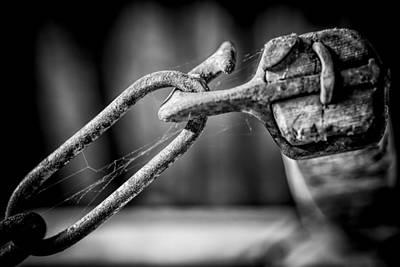 Iron Photograph - I Got You Babe by Erik Brede