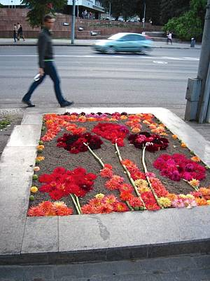 Vilnius Photograph - I See Flowers For You Everywhere by Mary Lee Dereske