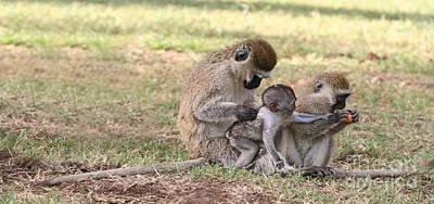 Monkey Photograph - I Want Some by Liz Leyden