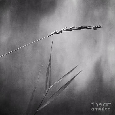 I Will Hold You In Black And White Print by Priska Wettstein