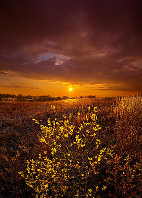 I Will See You Again Print by Phil Koch