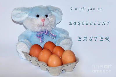 I Wish You An Eggcellent Easter Print by Kaye Menner