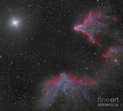 Ic 59 And Ic 63 In Cassiopeia Print by Bob Fera