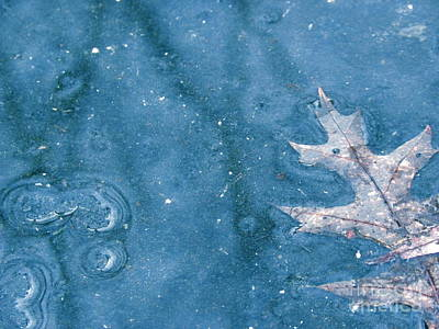 Ice Reflections 2 Print by Laura Yamada