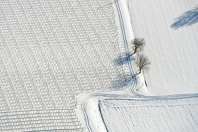 Ice Wine Print by Holger Spiering