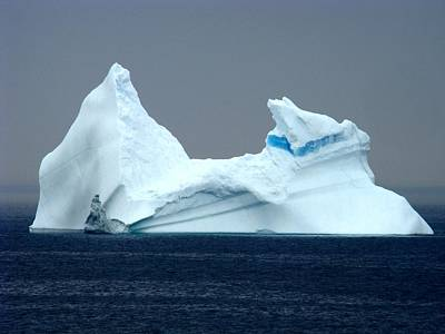 Sea Painting - Iceberg In Newfoundland  by Zinvolle Art