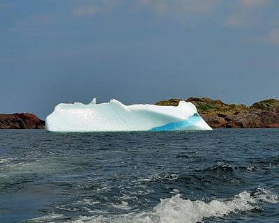 Iceberg Off Little Fogo Islands Newfoundland Print by Lisa Phillips