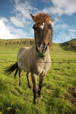 Josh Photograph - Iceland, Reykjavik by Jaynes Gallery