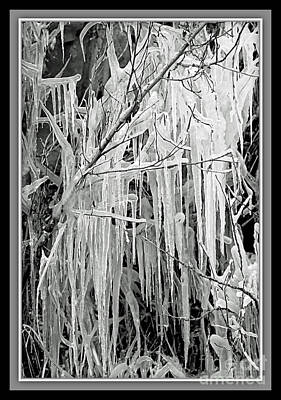 Icicles In Black And White Print by Carol Groenen