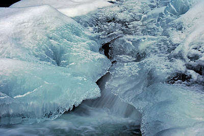 Photograph - Icy Beauty by Jeremy Rhoades