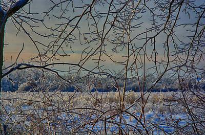 Ringo Photograph - Icy Web by Ryan Crane