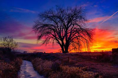 Nature Photograph - Idaho Winter Sunset by Greg Norrell