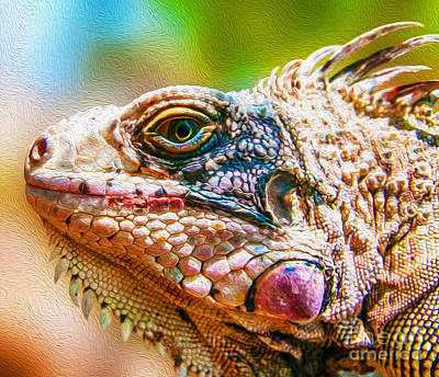 Mixed Media - Iguana From Margarita Island by Steven Peters