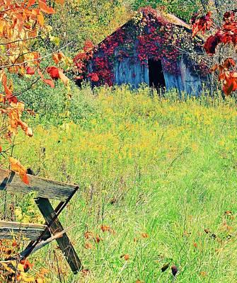 Pasture Scenes Mixed Media - Illinois Backroads by Virginia Folkman