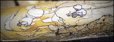 Geese Photograph - Images In Drift Wood by LeeAnn McLaneGoetz McLaneGoetzStudioLLCcom