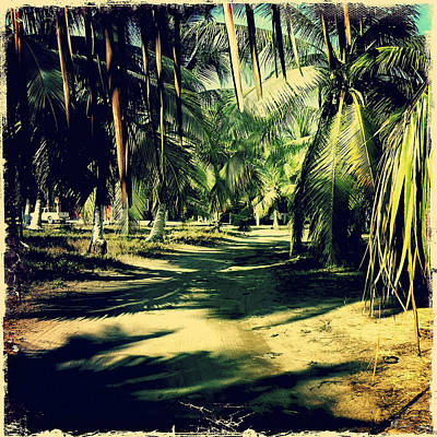 Haleiwa Photograph - Morning Walk by Stacy Vosberg