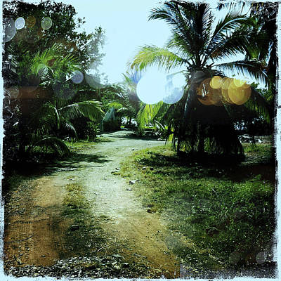 Haleiwa Photograph - Beach Road by Stacy Vosberg