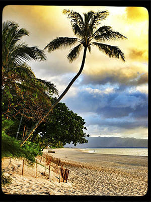 Haleiwa Photograph - Leaning by Stacy Vosberg