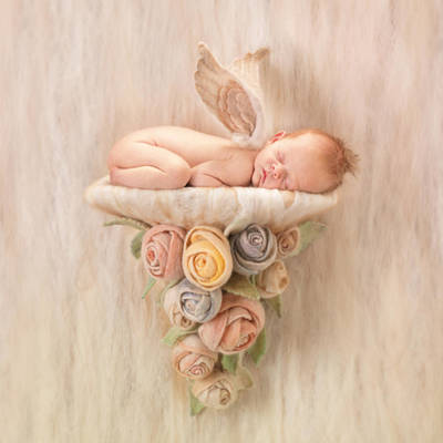 Crafted Photograph - Imogen by Anne Geddes
