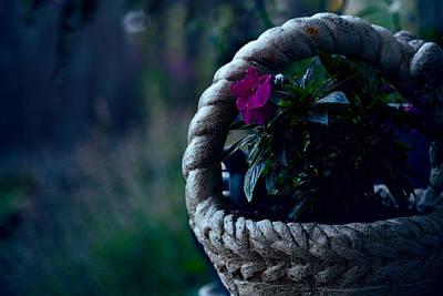 Stone Planter Photograph - Impatiens by Bonnie Bruno