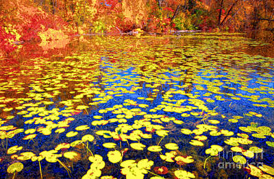Waterlily Photograph - Impression Of Waterlily Pond by Charline Xia