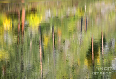 Impressions Of Autumn Print by Mike  Dawson