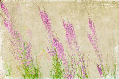 Impressions Of Spring Print by Bonnie Bruno