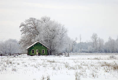 Shack Photograph - In A Sea Of White by Mike  Dawson