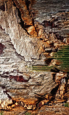 Psychedelic Rock Photograph - In Box Canyon Abstract  by Lee Craig