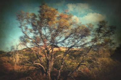 Poetic Photograph - In Formaldehyde by Taylan Soyturk