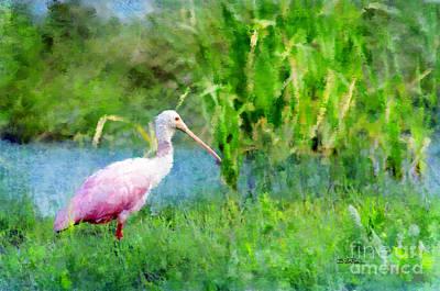 Spoonbill Digital Art - In The Bayou #1 by Betty LaRue