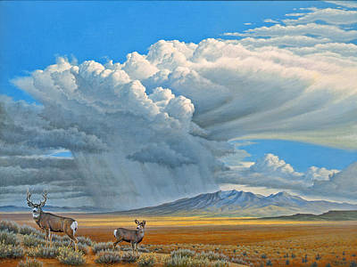 In The Foothills-mule Deer Print by Paul Krapf