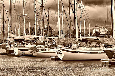 In The Harbor Sepia Print by Cheryl Young