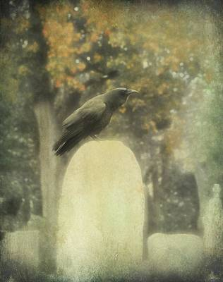 Corvid Digital Art - In The Mist Of Fall by Gothicolors Donna Snyder