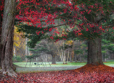 In The Park Print by Bill Wakeley