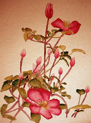 Clematis Painting - In The Pink by Eileen Tascioglu